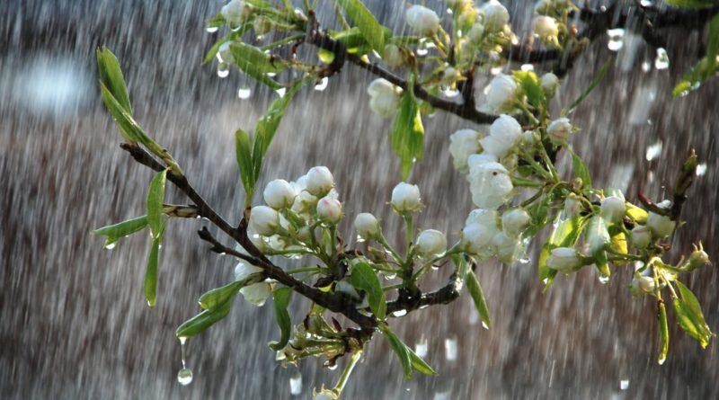 Общение с дождем